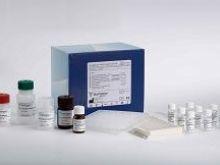 小鼠纤溶抑制因子/凝血酶激活的纤溶抑制物(TAFI)elisa试剂盒