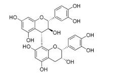 原花青素B4,Procyanidin B4